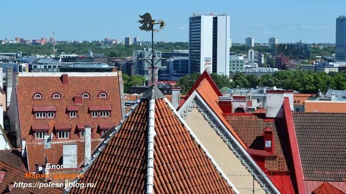 Старый Таллинн, вид сверху